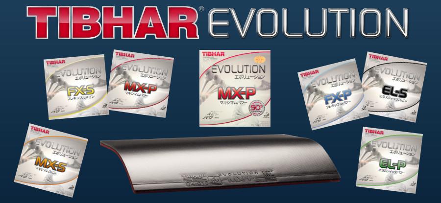 Tibhar Evolution Rubbers